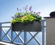 Fioriere dei balconi. Del privato le spese di manutenzione